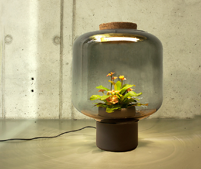 The plant-lamps were designed for people without windows Until today, we never realized how much we wanted to grow a plant inside of a lamp.